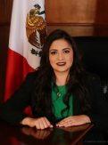 DIP. ALICIA GUADALUPE GAMBOA MARTÍNEZ